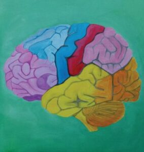 Brain Opener – wizyta studyjna w Macedonii