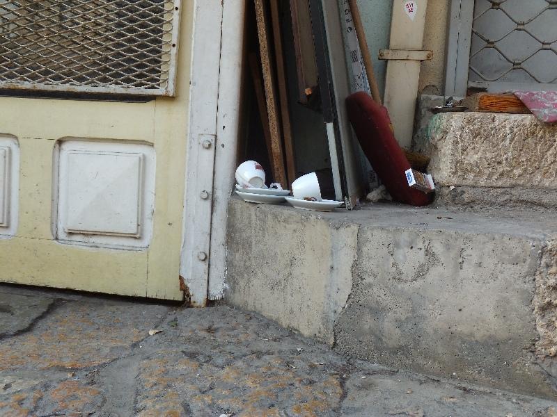 EVS Macedonia: Lady Paulina na osobliwym karnawale
