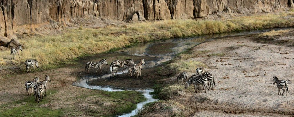 Wycieczki po Tanzanii